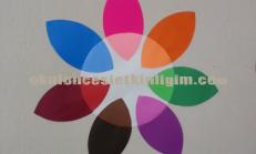 Renk Grafiği Örneği