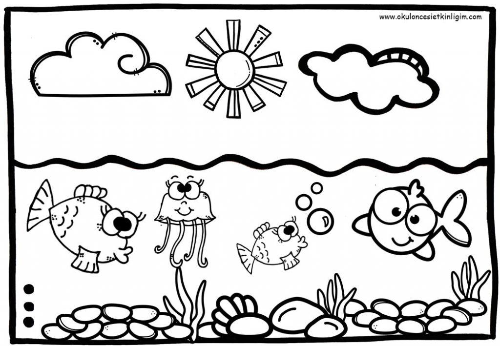 Deniz Canlıları Boyama Sayfaları
